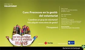 Curs: Processos en la gestió del Voluntariat