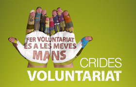 Fes Voluntariat!
